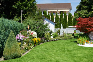 lawn-care-services-issaquah-wa